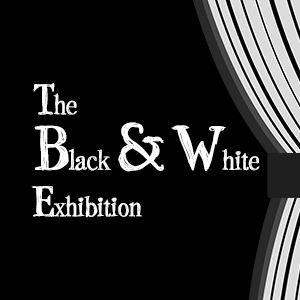 Artlab Black and White Exhibition
