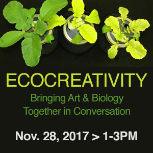 Ecocreativity_Calendar_Image